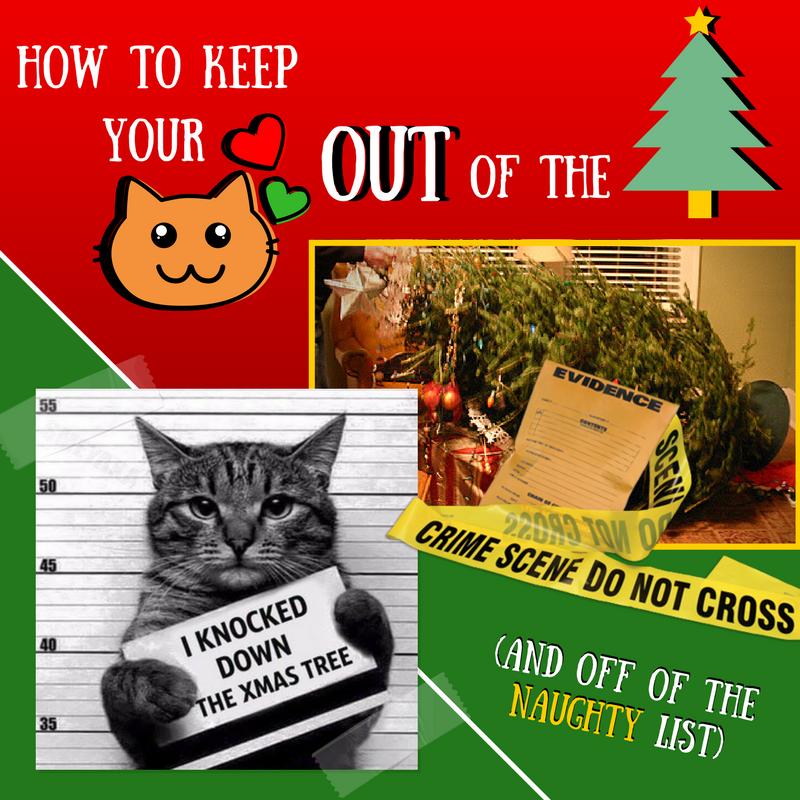 Keep Cat Away From Christmas Tree: Allegheny North Veterinary Hospital